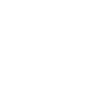 smithwesson-logo